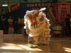 lion dance competition 2008