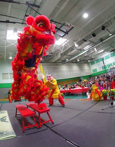 vietnamese community performance